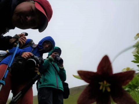 Фотоальбом: Экспедиция на Командорские острова