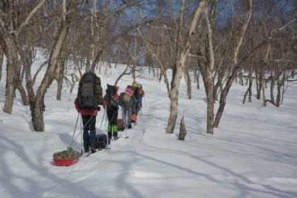 Лыжный поход к Ключевской сопке